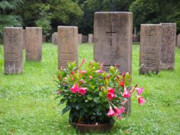 Grave Stones Cemetery Forest Cemetery Stuttgart
