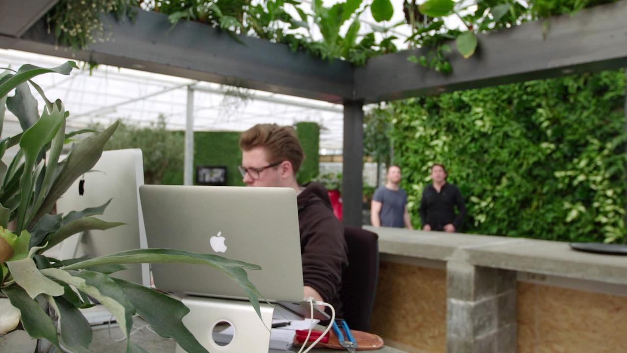 Gezonde trend een groene wand in je huis kantoor of tuin