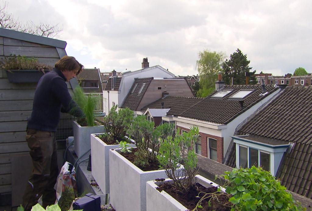Hoe leg je de perfecte balkontuin aan?