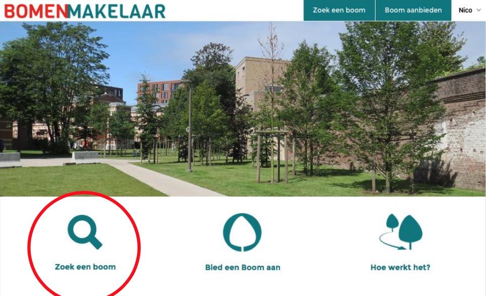 Boom over? Niet kappen! Kijk op bomenmakelaar.nl!