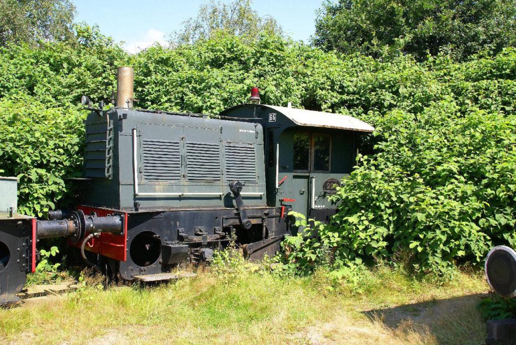 treintje met duizendknoop in Beekbergen