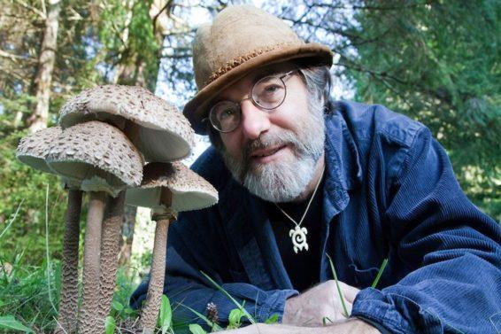 Bijenspecialist Paul Stamets bij een paddenstoeln