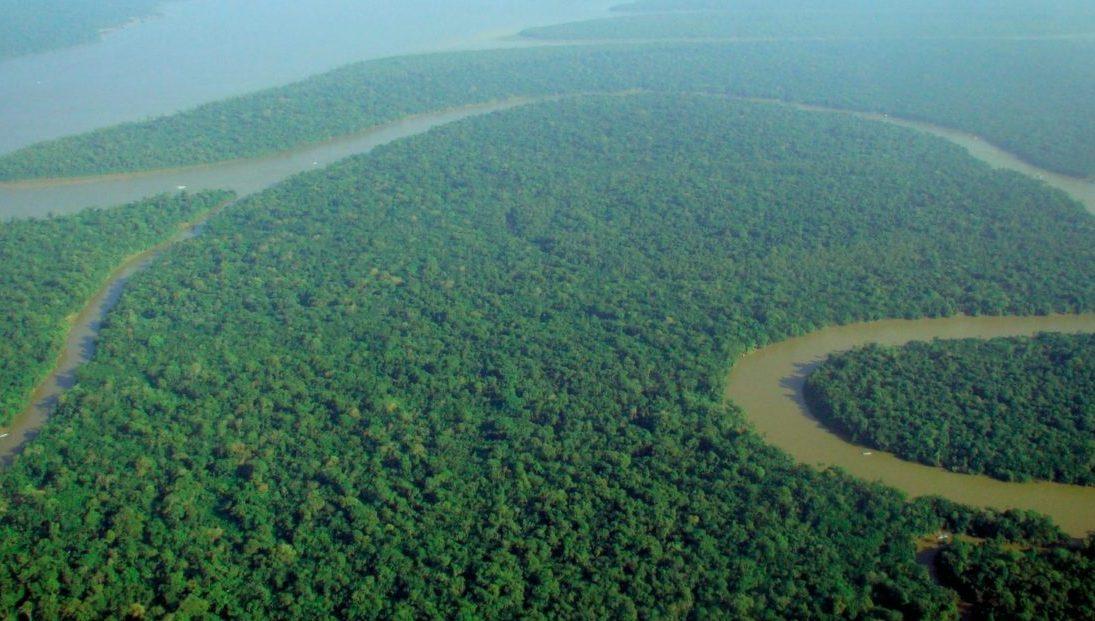 60 miljoen hectare Amazonewoud beschermd!