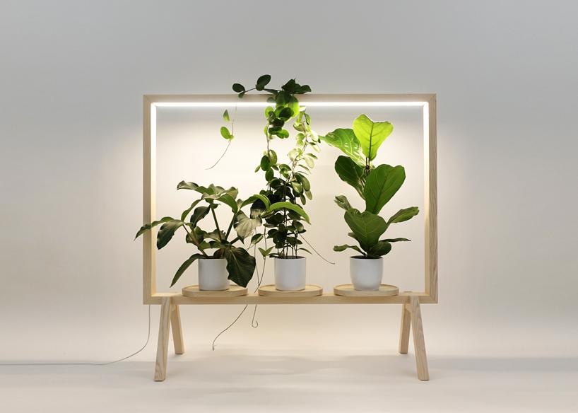 Zet je kamerplanten in een lijst met deze room divider