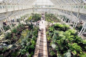 TheMainSectionOfTheTemperateHouse.jpg.990x0_q80_crop-smart