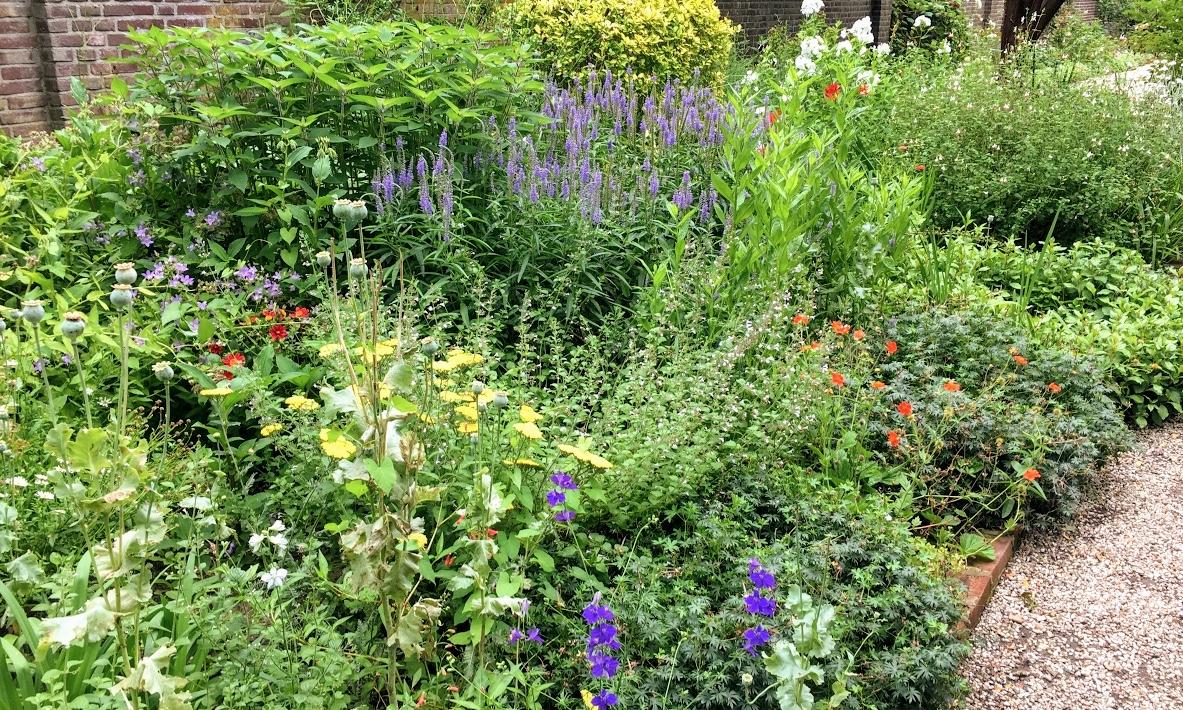 Zo maak je een mooie border voor je tuin
